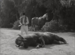 Wagon train stuffed dead buffalo